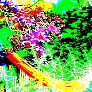 WP_20160627_8546